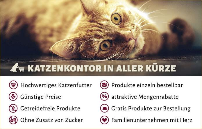 Katzenkontor Vorteile